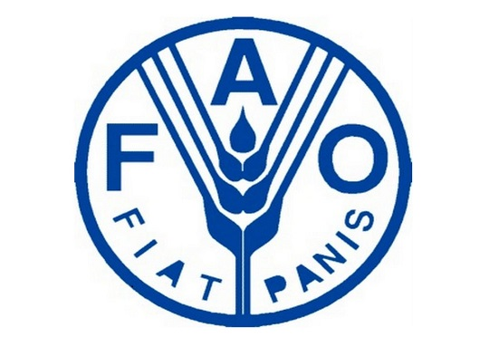 Agribusiness Officer for FAO